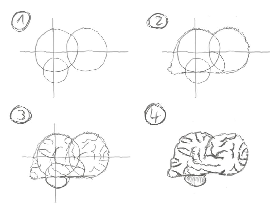 Anleitung: How to draw a Gehirn (Bleistift)
