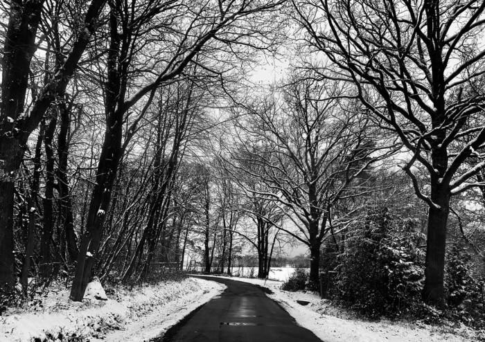 Wintereinbruch im Donnersbergkreis