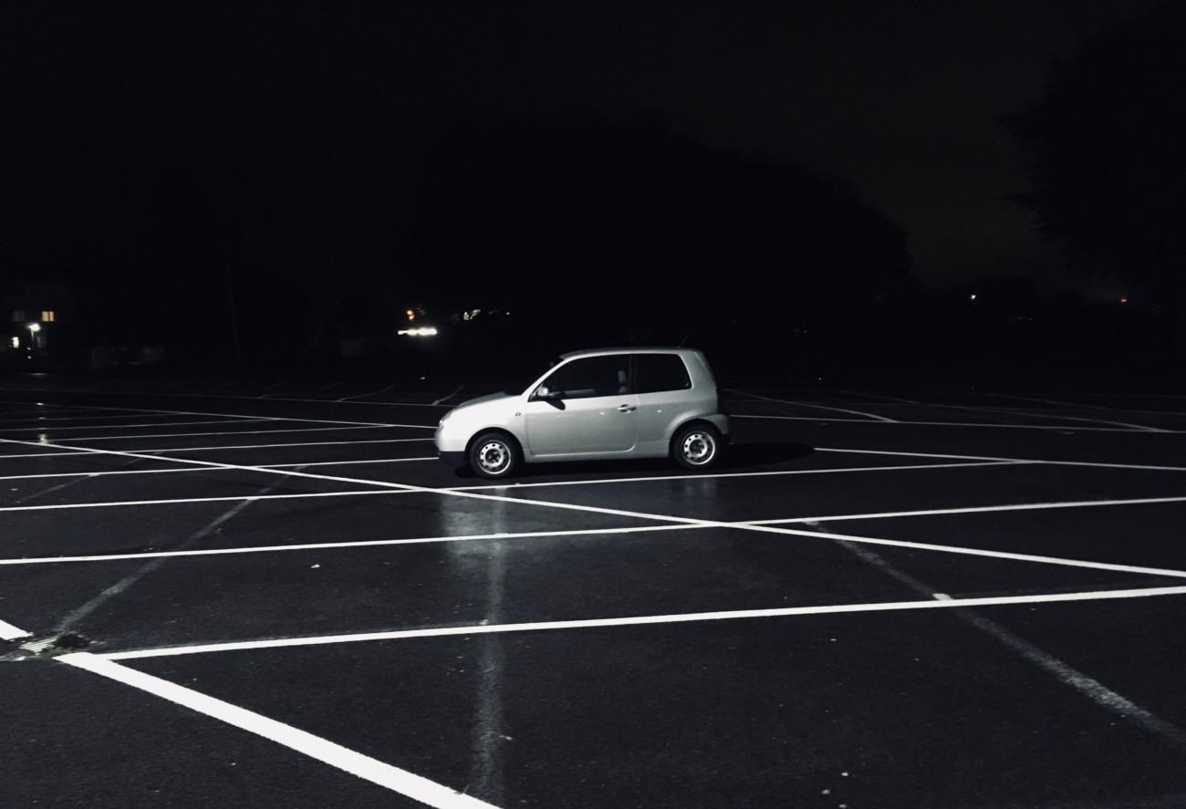 Lupo in der Nacht