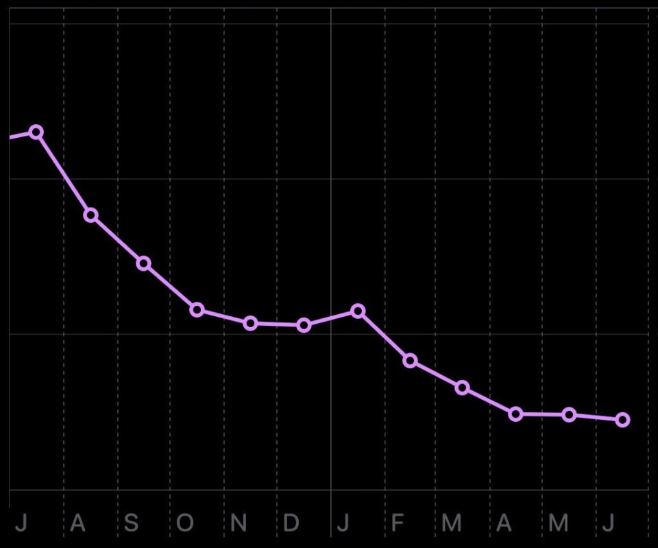 Apple Health - Gewichtskurve: Jahr